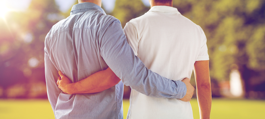 people, homosexuality, same-sex marriage, gay and love concept - close up of happy male gay couple hugging from back over natural outdoor background